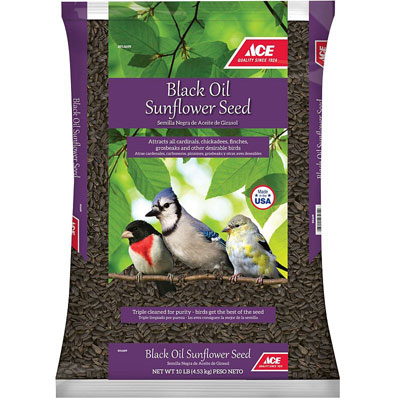 Ace Black Oil Sunflower Songbird at Ace Hardware